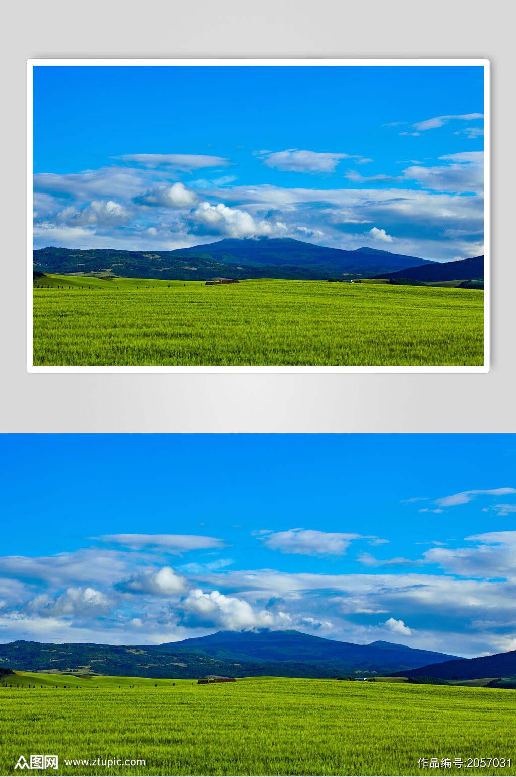 草地天空风景图片蓝天草原白云摄影图素材