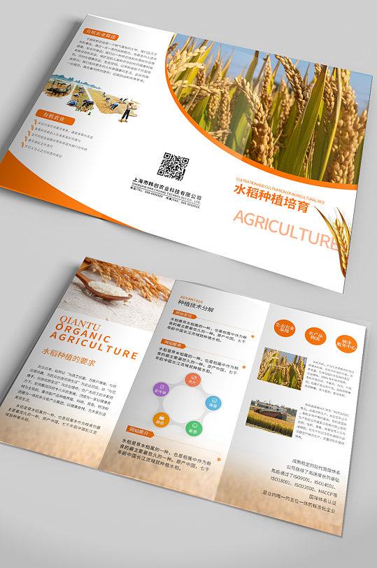 水稻种植培育通用宣传折页-众图网