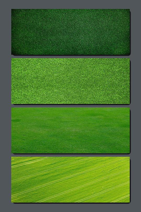 高清草地草坪背景素材
