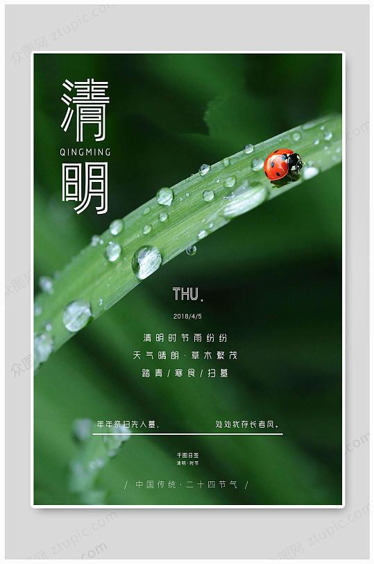 清明时节传统大气海报-众图网