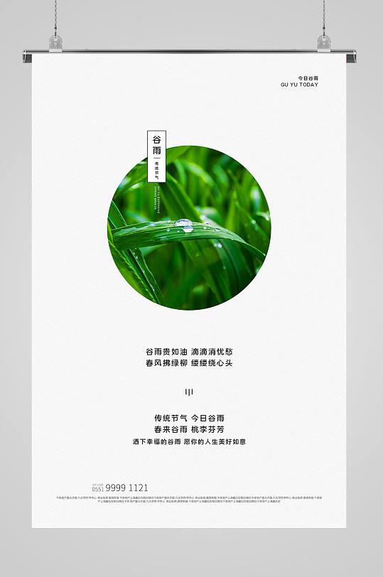 谷雨节气海报谷雨创意-众图网