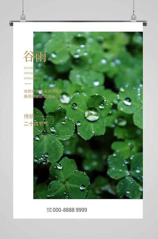 谷雨节气海报节气图-众图网