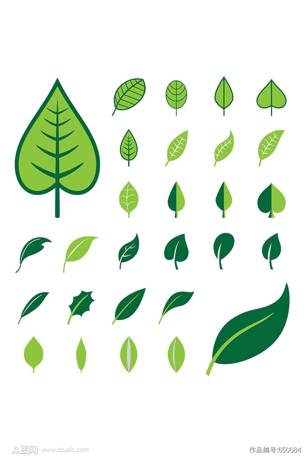 植物手绘绿叶叶子素材素材