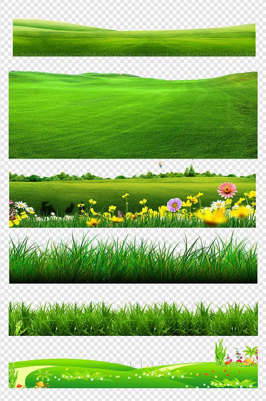 草坪草地绿色植物花草